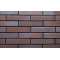 Governmental Building Metallic Color Tile Brick Wall